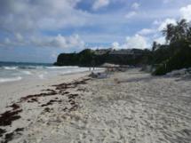 Der Crane Beach mit dem gleichnamigen Resort im Hintergrund