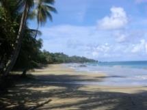 Der Grafton Beach und die Stone Heaven Bay im Südteil von Tobago