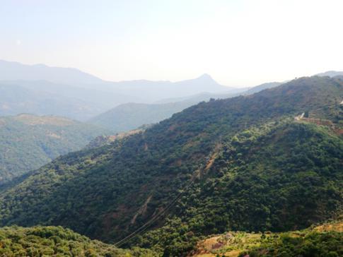 Panorama direkt von der Straße aus - wunderschönes Andalusien