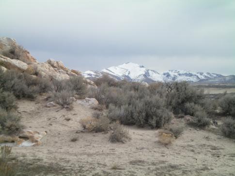 Blick auf den Freary Peak