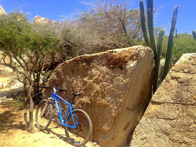 Mountainbiken auf Aruba