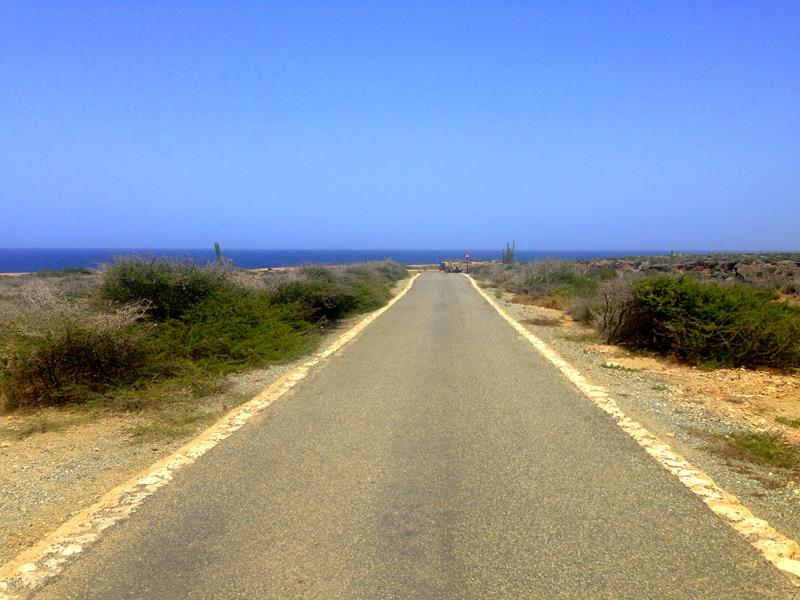 Mountainbiken auf Aruba durch den trockenen Arikok National Park