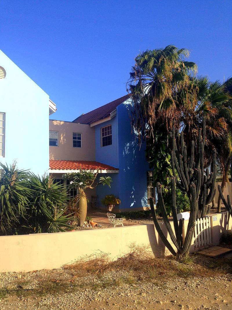 Ein typisches Bild auf Aruba: gut sanierte Häuser aber trockene Vegetation