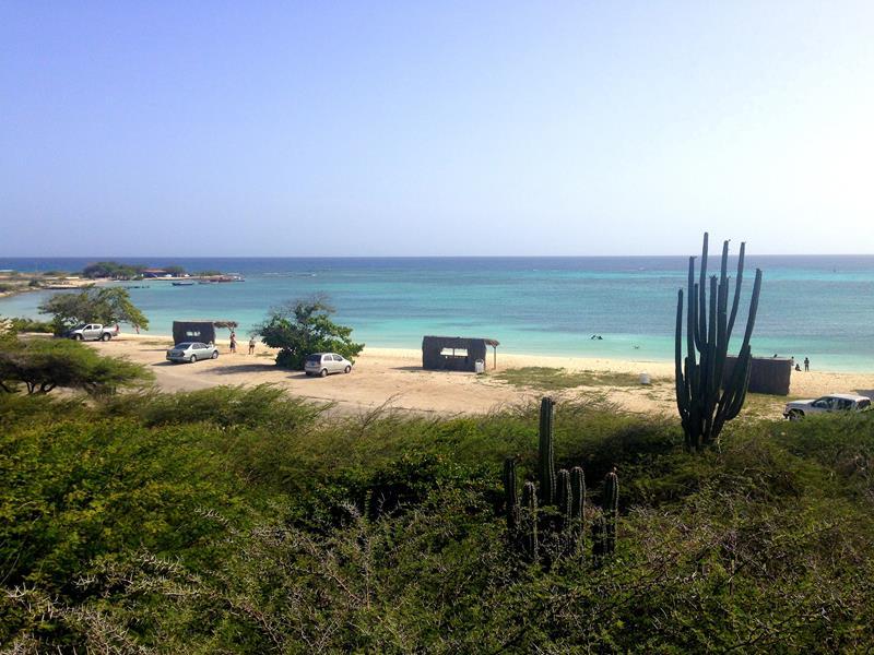 Der Rodgers Beach auf Aruba