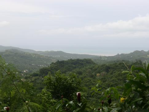 Ausblick vom Flower Forest auf die Ostküste von Barbados