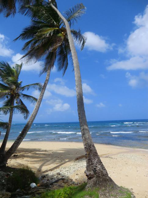 Die Martins Bay an der Ostküste von Barbados