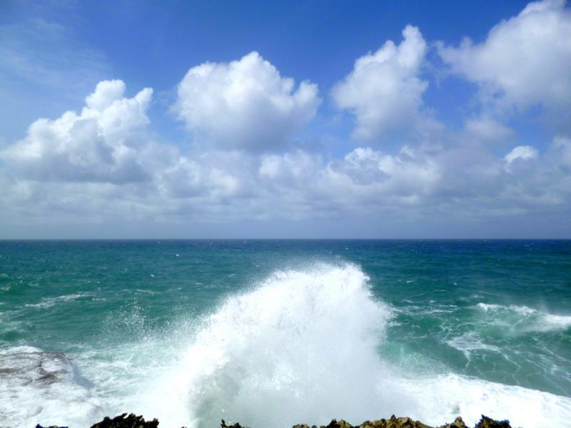 Die schroffe Nordküste von Barbados an der Animal Flower Cave