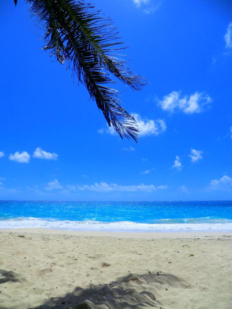 Der fantastische Bottom Bay Beach im Süden von Barbados