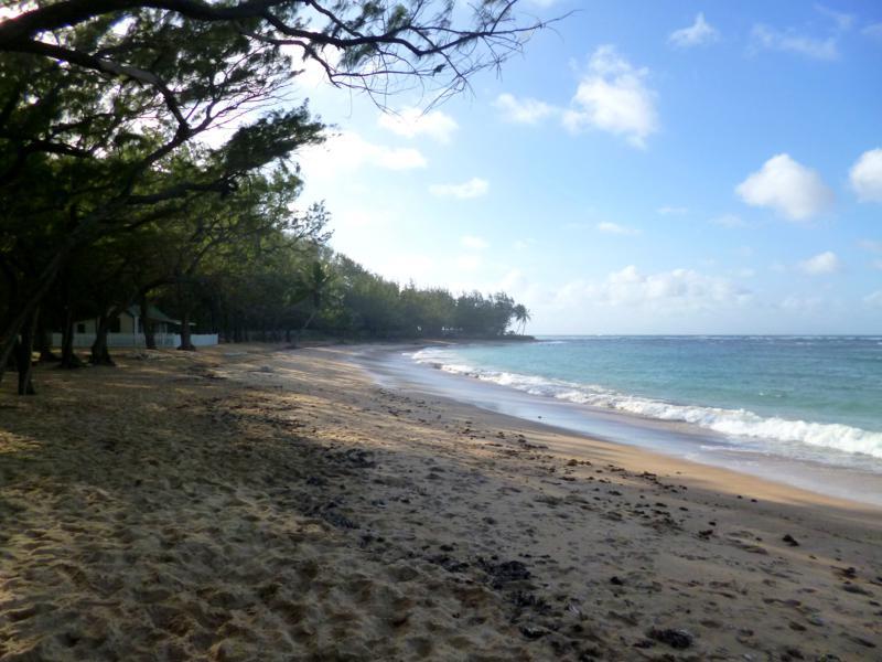 Der Bath Beach in Barbados