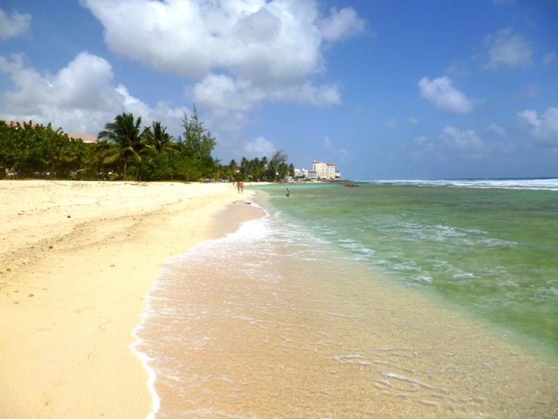 Der Coconut Beach in Barbados