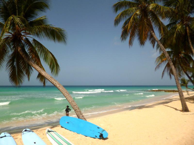 Meine erste Surfstunde auf Barbados
