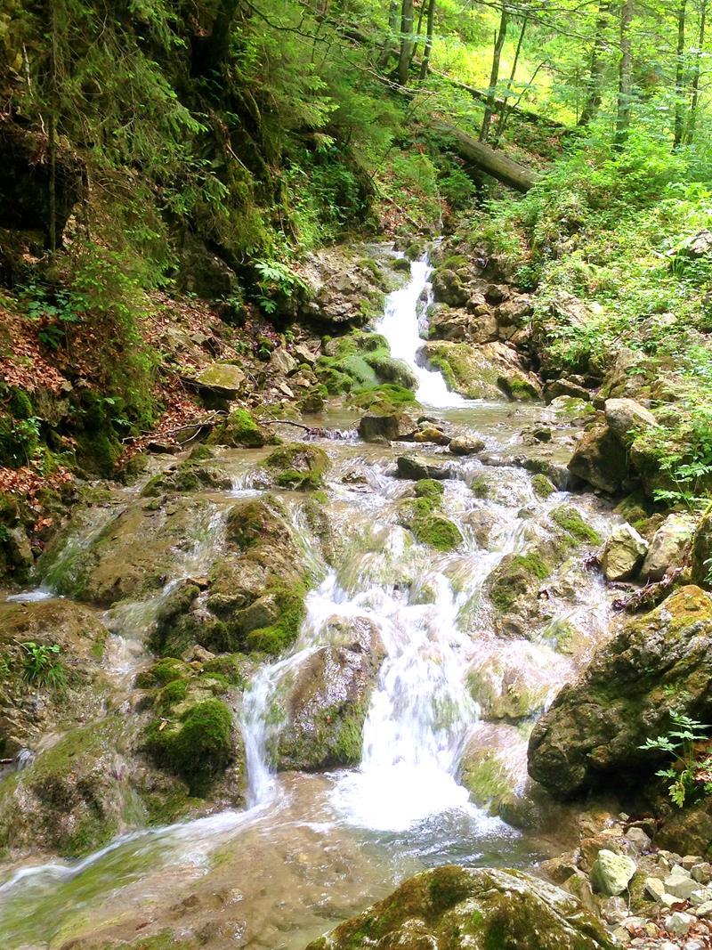 Ein Teil der Lainbach-Wasserfälle auf einer Wanderung zur Tutzinger Hütte