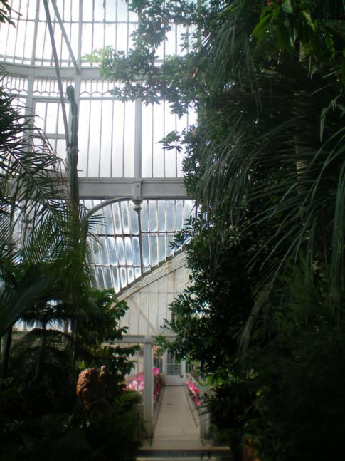Das Palmenhaus im Botanischen Garten von Belfast