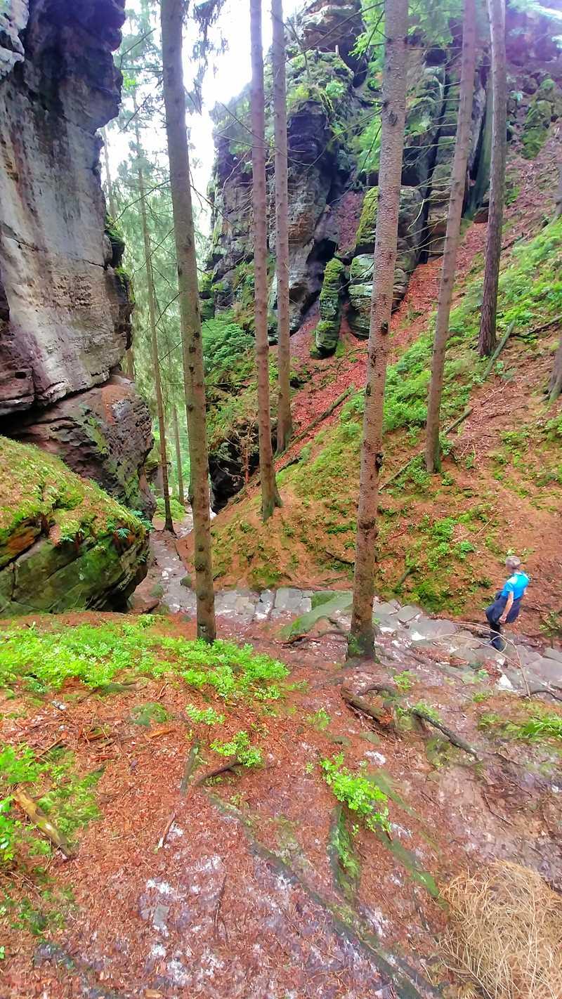 Der Wanderweg von Jetrichovice in die Ferdinandsklamm