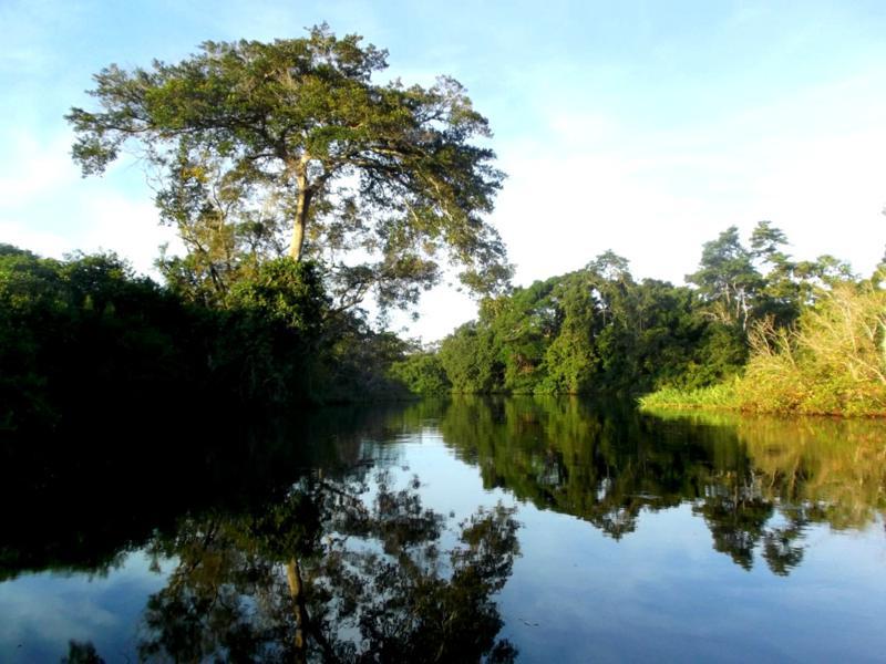 3-Tages-Tour in die Pampas von Rurrenabaque aus