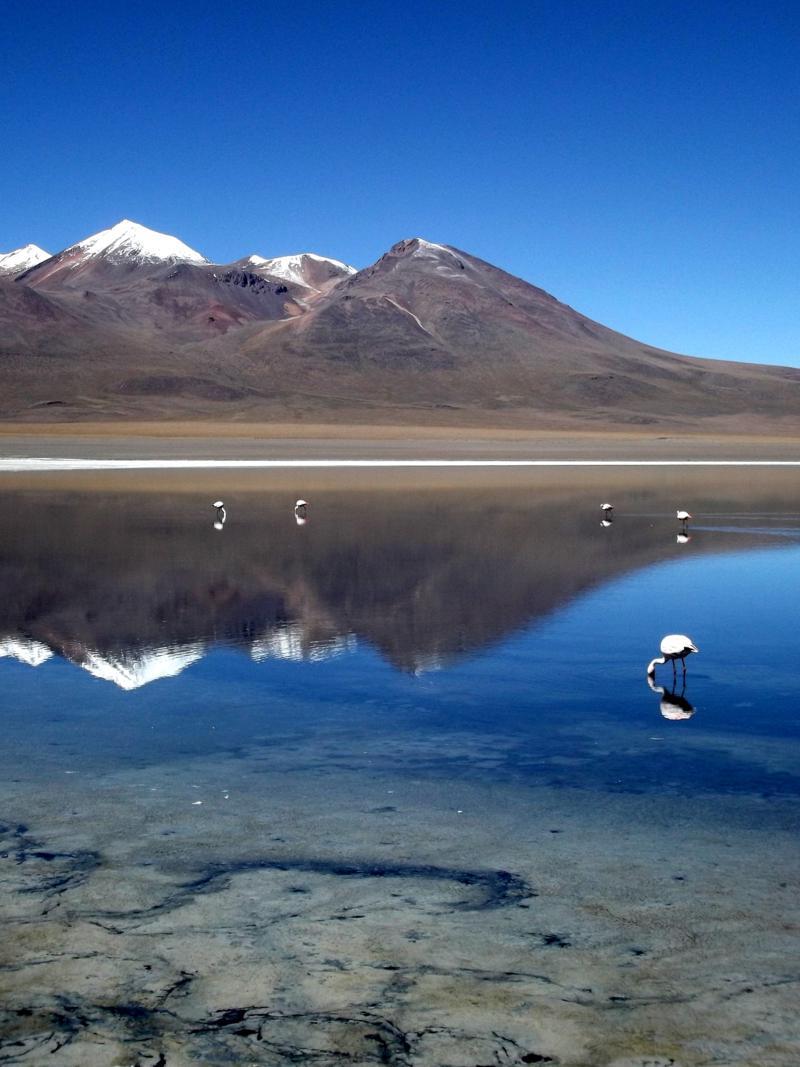 Die Laguna Canapa auf dem Weg durch die Salzwüste in Richtung Chile