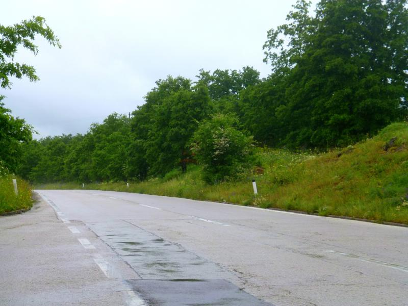 Typisches Bosnien - Schlaglochstraße und ganz viel Grün