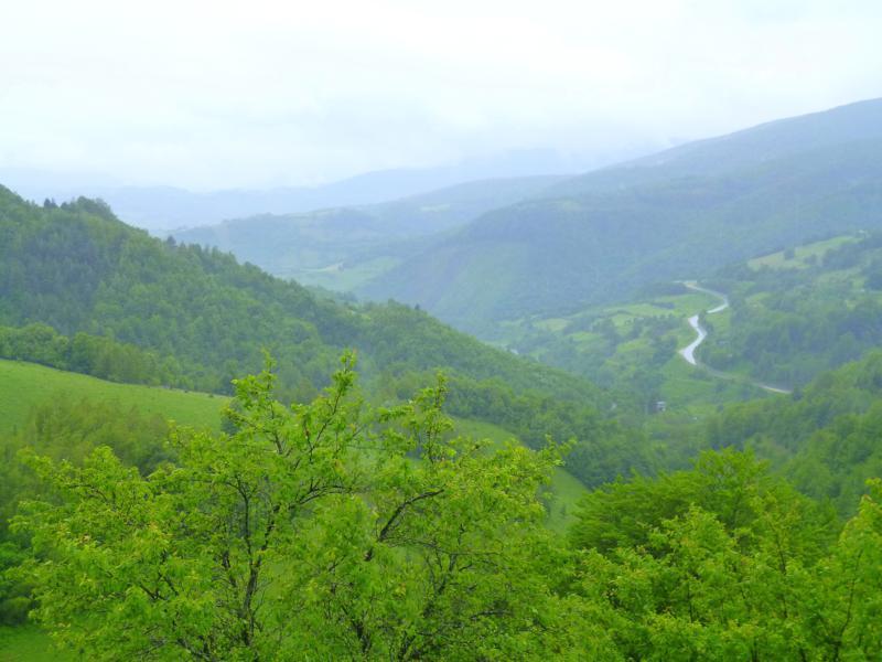 Blick auf die vorbeiziehende grüne Landschaft in Richtung Sarajevo