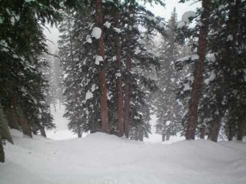 Eines der besten Tree-Skiing-Skigebiete der USA: Brighton