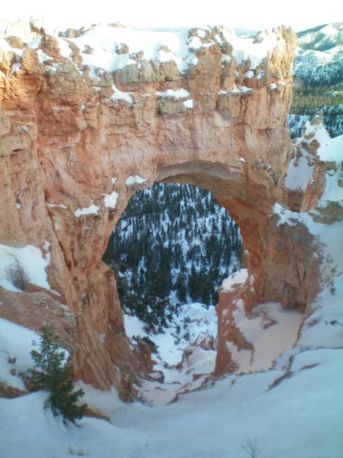 Die Natural Bridge im Bryce Canyon