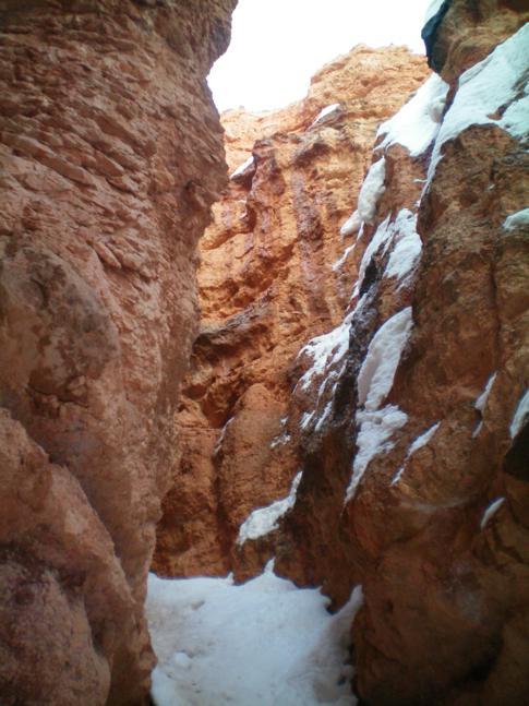 Der Bryce Canyon von unten