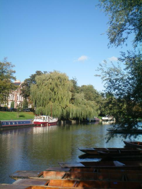 Der River Cam an der Magdalene Bridge