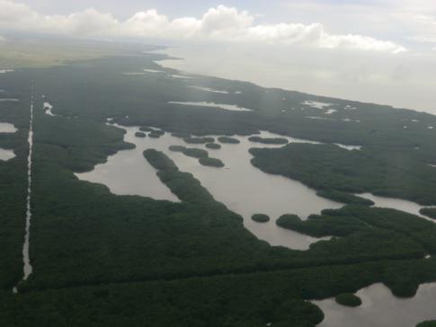 Das Caroni Swamp Gebiet südlich von Port of Spain, der Hauptstadt von Trinidad