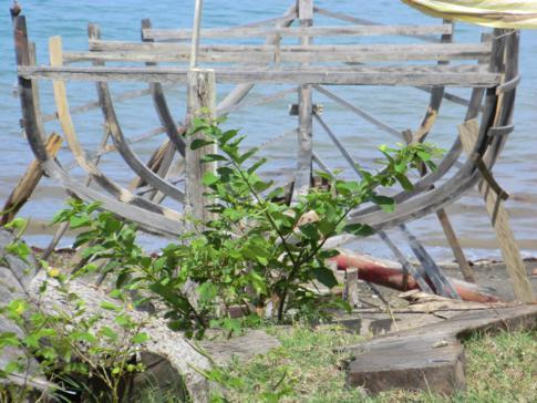 Ein angefangener Schiffsrumpf in kleinen Örtchen Windward im Norden von Carriacou