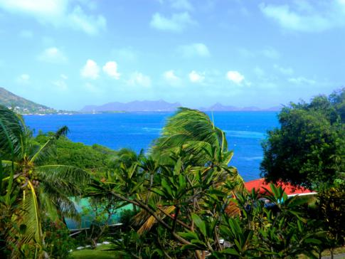 Bayaleau Point Cottages - Entspannung pur in Carriacou