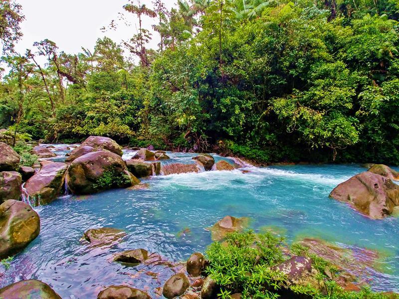 Der Rio Celeste im Tenorio National Park