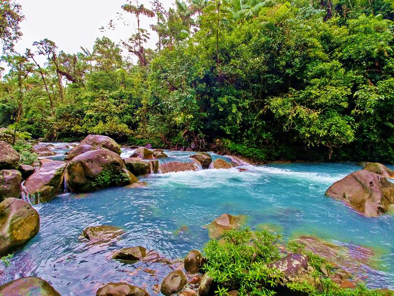 Rio Celeste Hideaway Hotel - Edle Dschungel-Bungalows im Tenorio-Nationalpark