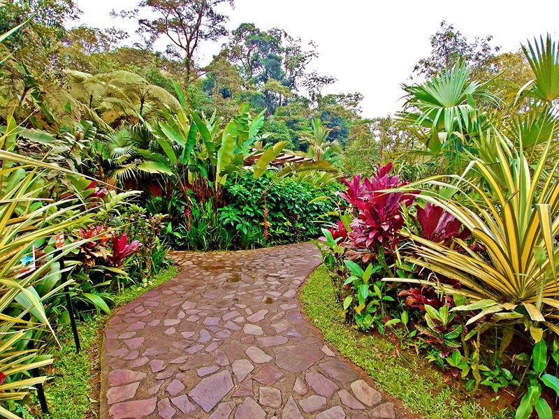 Der wunderschöne Garten im Rio Celeste Hideaway Hotel