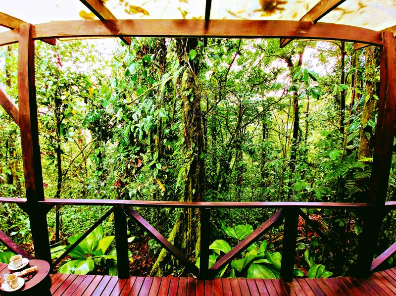 Rio Celeste Hideaway Hotel - elegante Eco-Lodge in Costa Ricas Nationalpark