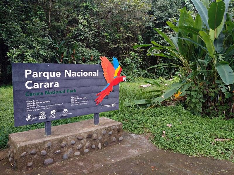 Der Carara National Park im Westen von Costa Rica