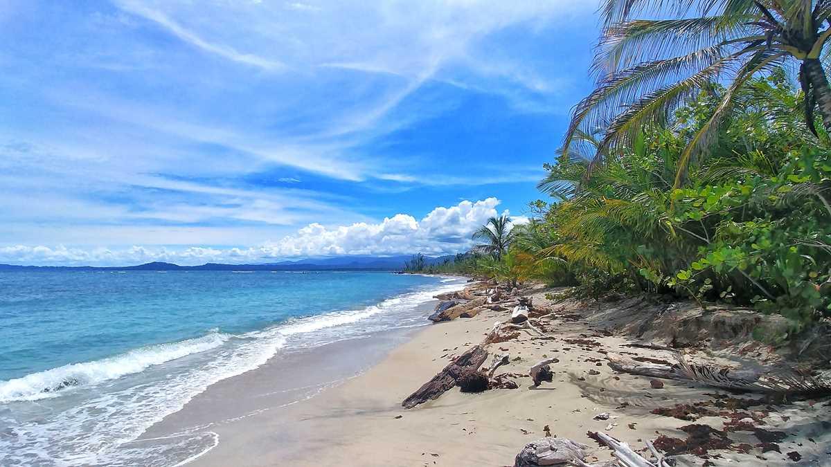 Strand an der Karibik-Küste im Cahuita Nationalpark in Costa Rica