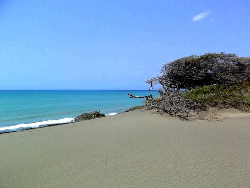 Die Dunas de Bani bei Las Salinas im Süden der Dominikanischen Republik