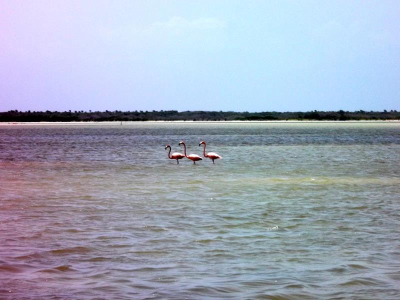 Die Laguna de Oviedo im Südwesten der Dominikanischen Republik