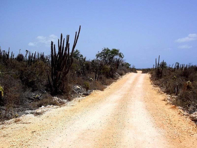Auf dem Weg zur Bahia de las Aguilas