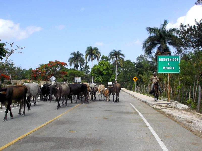 Fahrt nördlich von Pedernales in der Sierra de Bahoruco