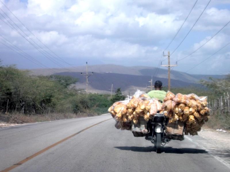 Dominikanisches Landleben am Lago Enriquillo