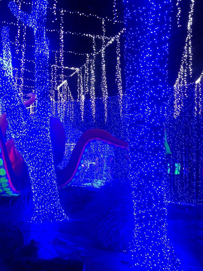 Der Lichterpark Parque de las Luces zur Weihnachtszeit in Santo Domingo