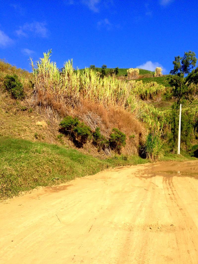 Tolle Landschaft in der Cordillera Central südlich von Constanza