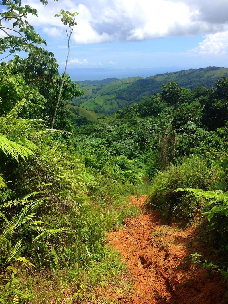 Traumhafte Idylle oberhalb von Magua und des Saldo de la Jalda