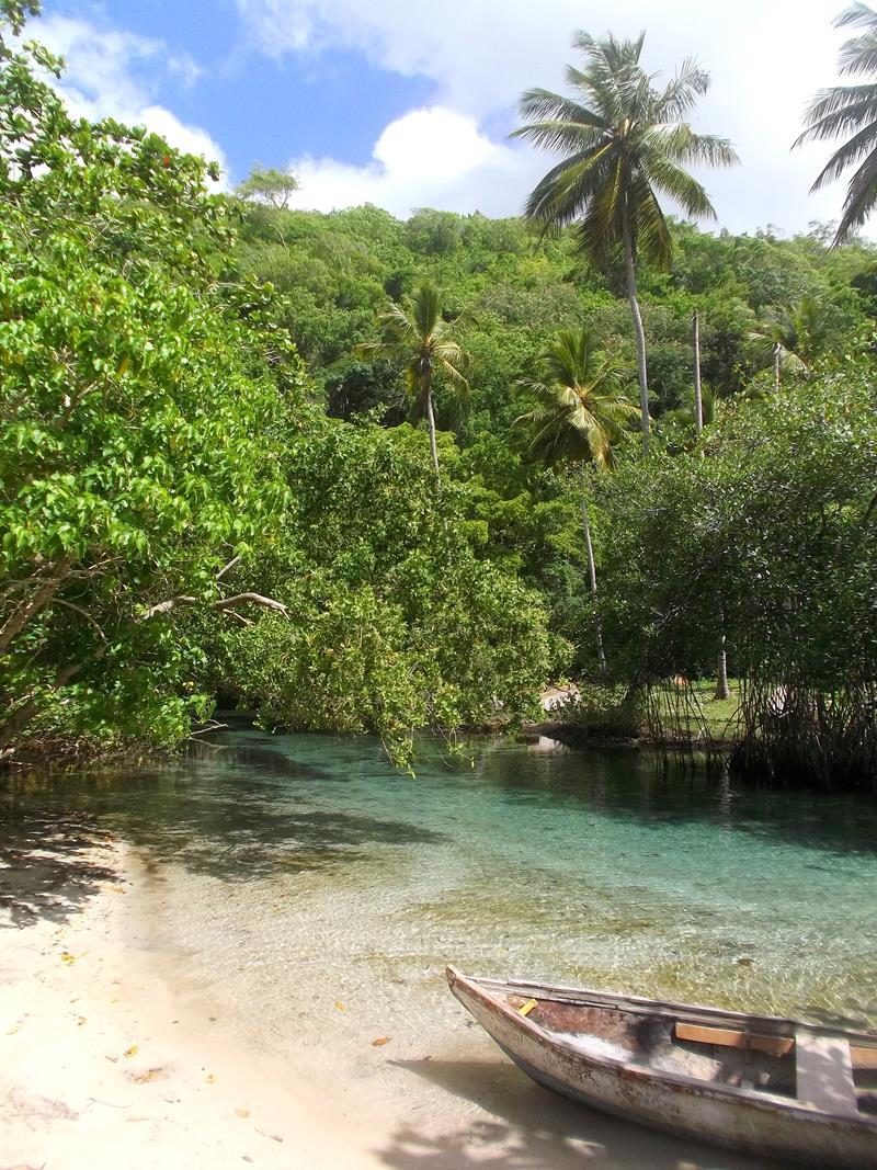 Der kleine Fluss Cano Frio am schönen Playa Rincon
