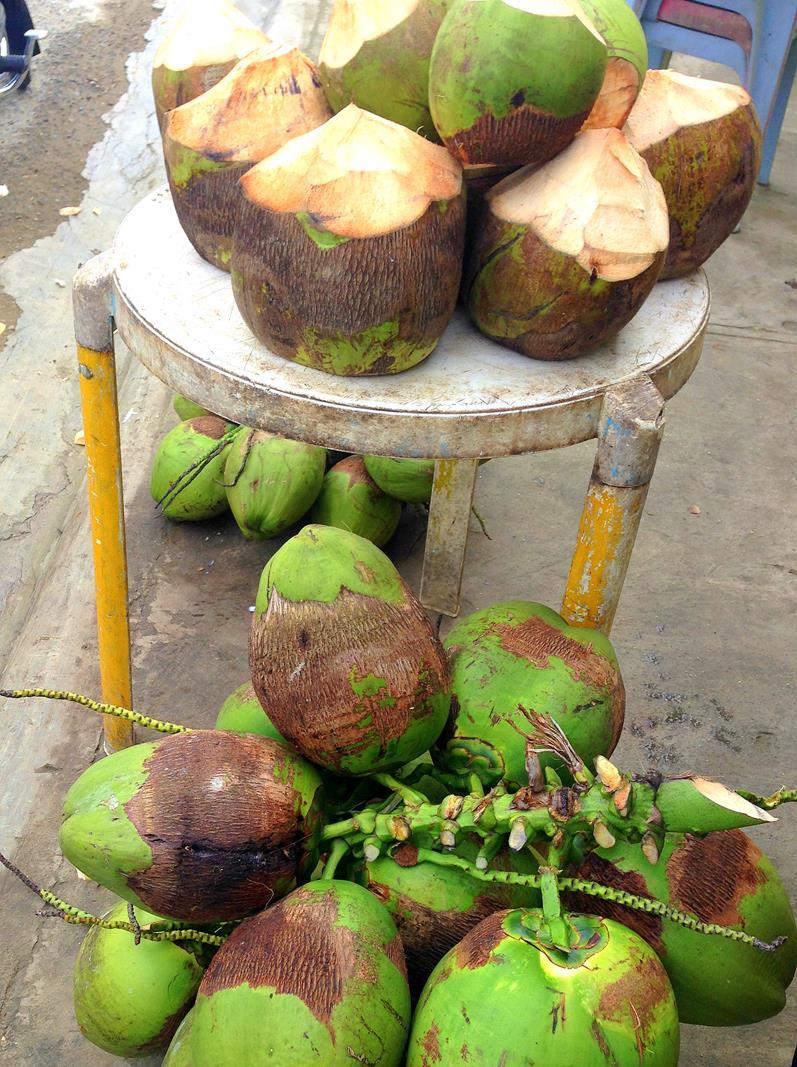 Kokosnuss in der Karibik, immer ein leckeres Getränk