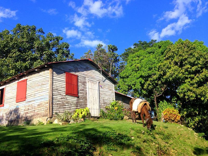 Süße Dörfer in der Dominikanischen Republik