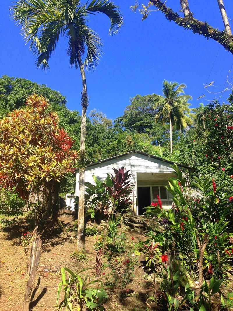 Wanderung durch die Cordillera Septentrional in der Dominikanischen Republik
