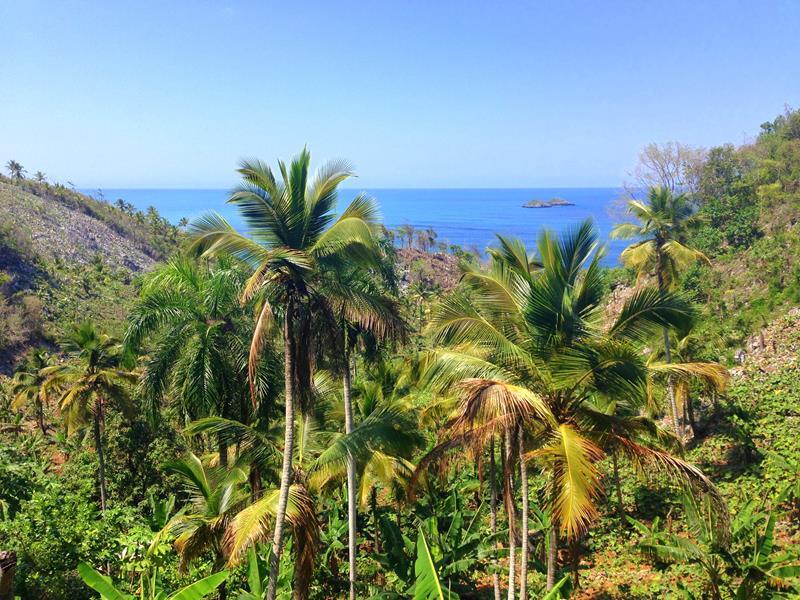 Weg zum Playa Ermitano durch grüne Vegetation und Bananenplantagen
