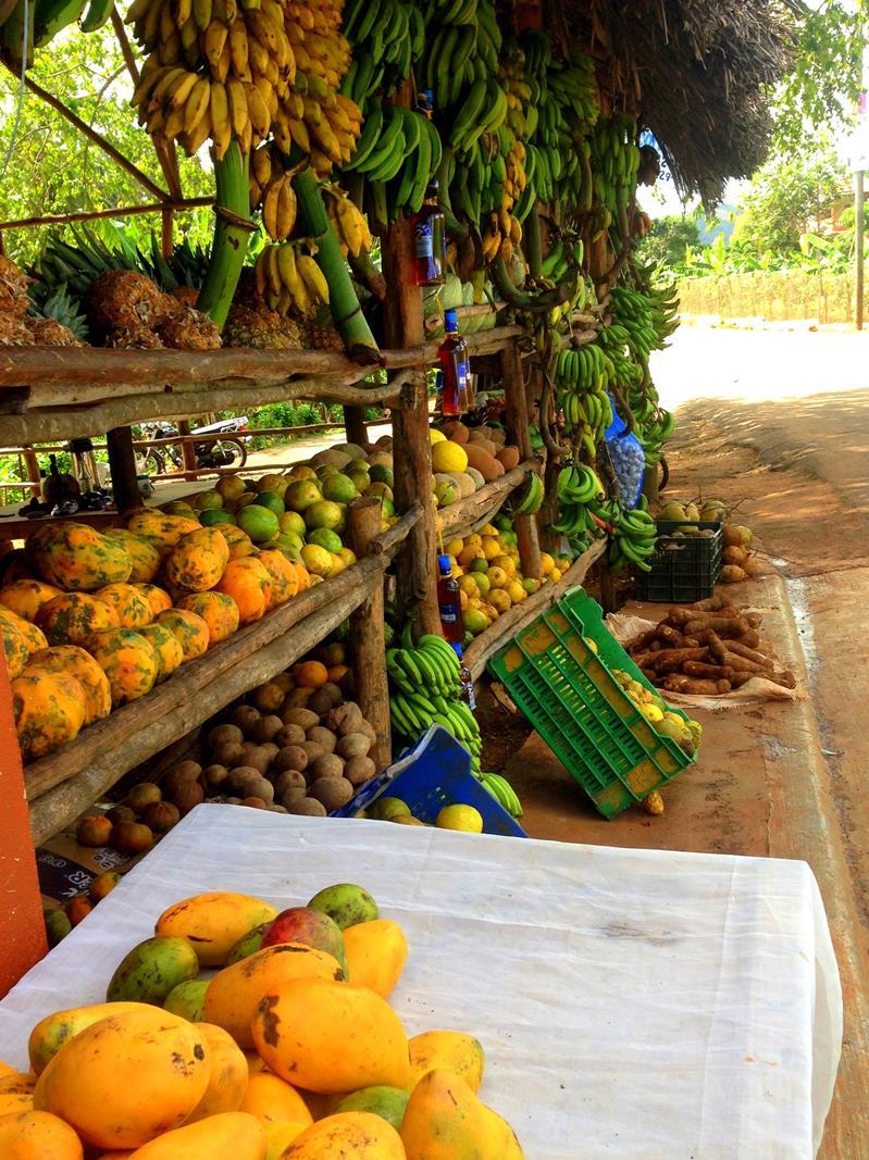 Ein typischer Früchtestand in der Dominikanischen Republik