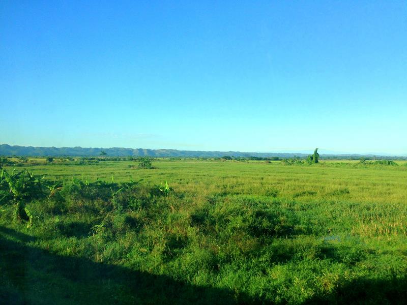 Blick von der Autopiste Samana auf die grünen Felder im Umland